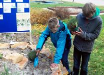 Foto von Jan und Maximilian bei der Arbeit an der Kräuterspirale