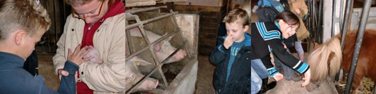 Schüler der Klasse E/1 mit Tieren auf dem Bauernhof