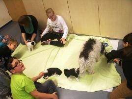 Foto von den SchülerInnen der Grundschule mit den Hundebabies