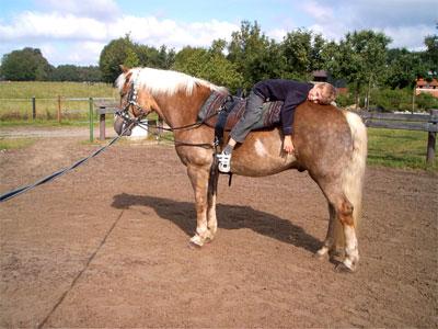 Ein Schüler liegt auf einem Pferd
