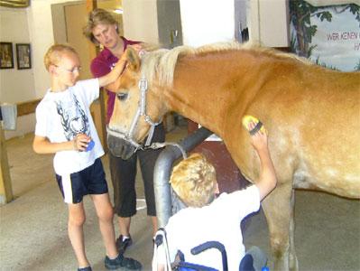 Zwei Schüler bürsten ein Pferd