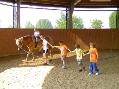 5 Schüler und 1 Pferd in der Reithalle