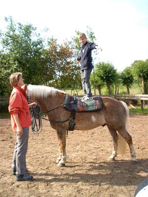 Ein Schüler steht auf einem Pferd