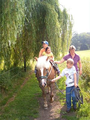 Schüler und Pferd beim Ausritt durch Wald und Wiesen