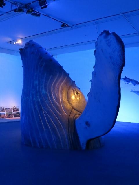 Ausstellung Wale