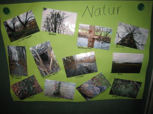 Das haben wir alles draußen gefunden. Unsere Umwelt ist so schön!