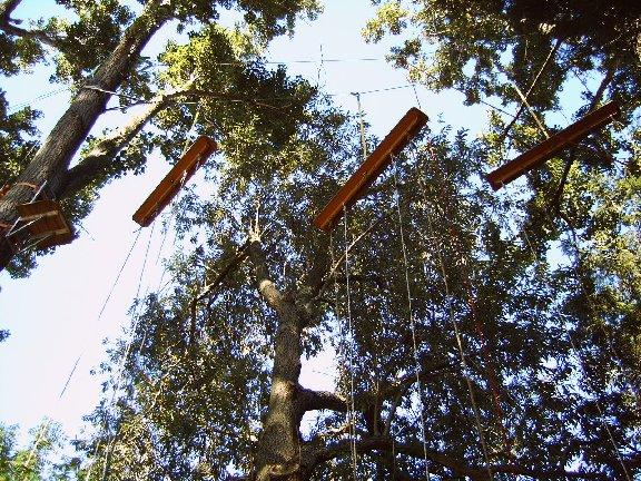 Wer steigt schon freiwillig in luftige Höhen, um von einem instabilen Brett auf ein nächstes zu hangeln?