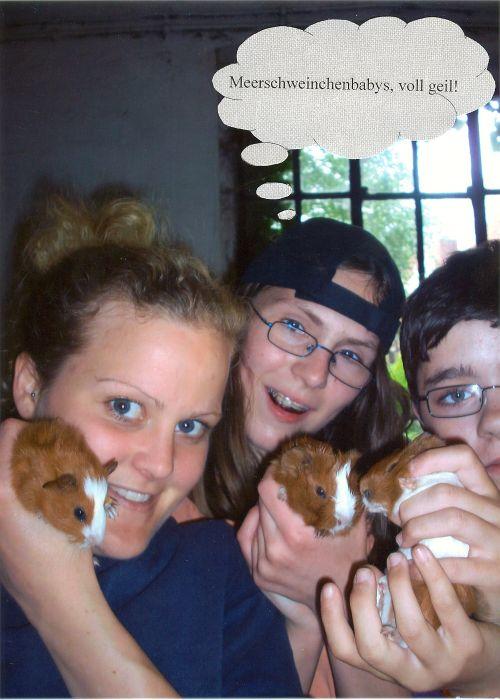 Meerschweinchenbabys - voll geil!