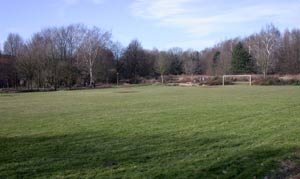 Blick auf eine Rasenfläche mit einfachem Fussballtor