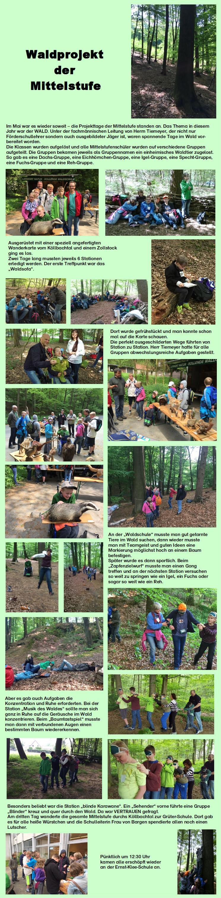 Waldprojekt