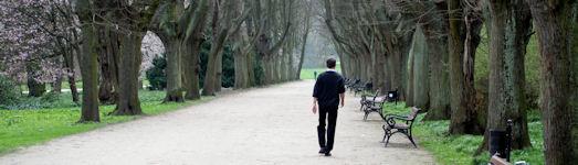 Schizophreniebehandlung: Ein langer Weg