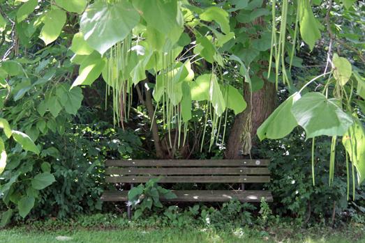 Bank im Garten der Tagesklinik Lünen