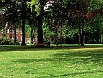 Foto zeigt Parkbild der Klinik