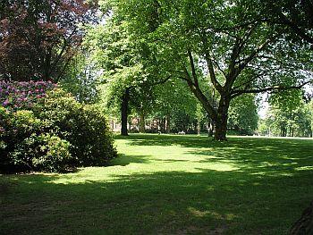Foto zeigt Park der LWL-Klinik Münster