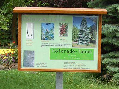 Foto vom Schild der Coloradotanne
