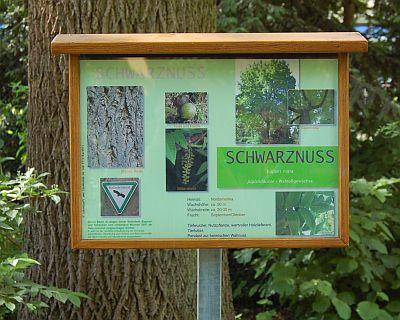"""Foto zeigt Schild zur """"Schwarznuss"""""""
