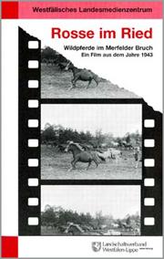 Das Bild zeigt das Video Cover Rosse im Ried