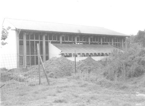 1982 - Bau der Turnhalle (Blick auf die Rückseite)