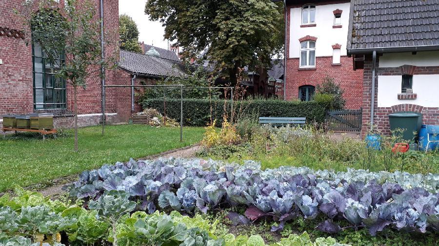 Arbeitergarten4_16_9.jpg