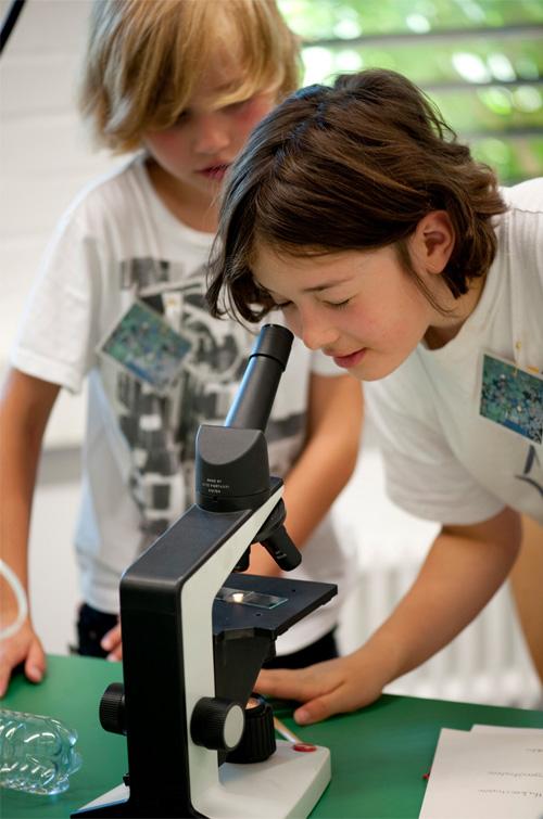 Bilddatei: MPP-Mikroskopieren_500x#.jpg