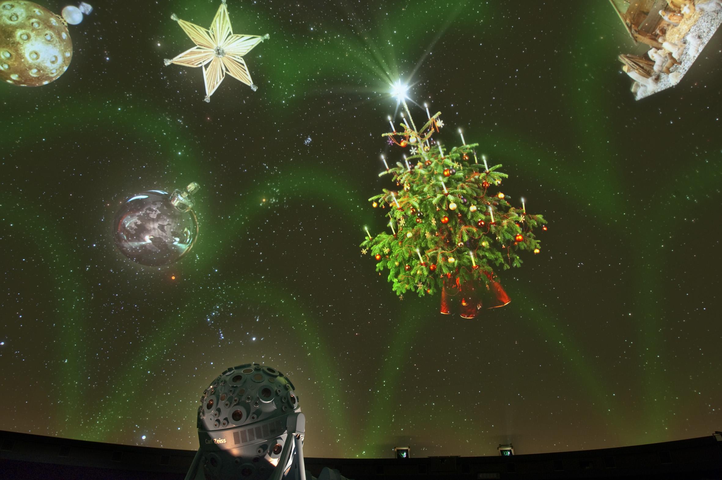 Bilddatei: Sternenglanz(c)oblonczyk,LWL.jpg