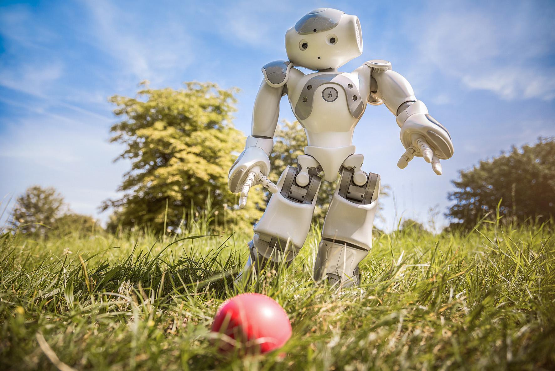 Bilddatei: Gehirn_Roboterfußball-kl(c)LWL,Steinweg.jpg