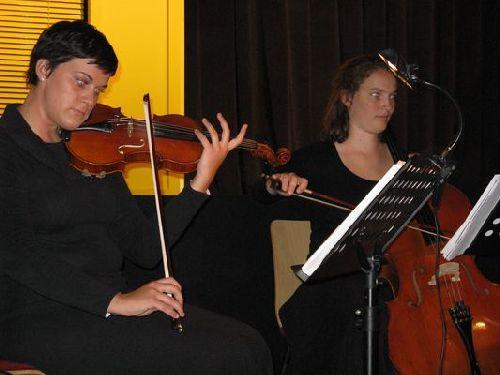Die Streicher im Orchester