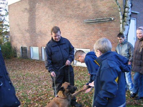 Eine herzliche Begrüßung durch die Hunde
