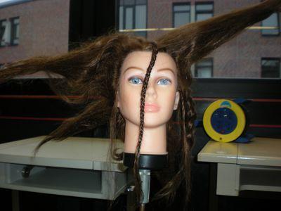 Von Schülerhand gemacht: Eine sehr extravagante Frisur!!!!