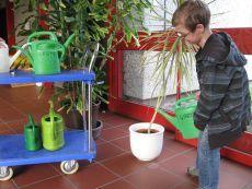 Ein Schüler der Schule gießt die Pflanzen.
