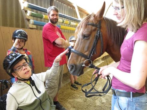 Begegnung mit dem Pferd