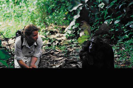Angelika Hofer im Regenwald von Afrika