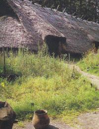 Bronzezeitliches Wohn-Stall-Haus aus Telgte-Woeste/Kreis Warendorf. Rekonstruktion im Archäologischen Freilichtmuseum Oerlinghausen / Münster, LWL-Archäologie für Westfalen