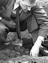 Einfache Suche im Internet-Portal 'Westfälische Geschichte' / Ausgrabung eines spätkarolingischen Prinzipalhofes auf Hof Meyering, Raesfeld, 1951 (Ausschnitt) / Foto: Ignaz Böckenhoff, LWL-Medienzentrum für Westfalen, 06_149