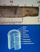 Holzfunde aus dem Römerlager Oberaden / Die Methode der Dendrochronologie